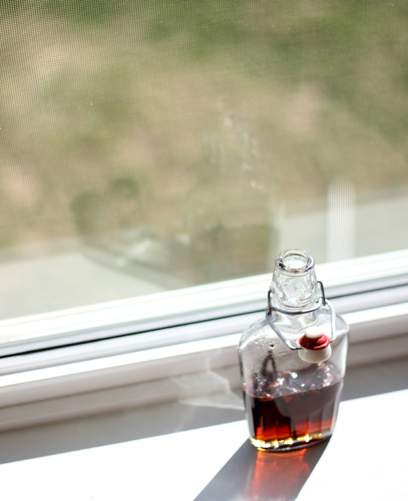 Vanilla and Star Anise Infused Maple Syrup | www.purplehousecafe.com